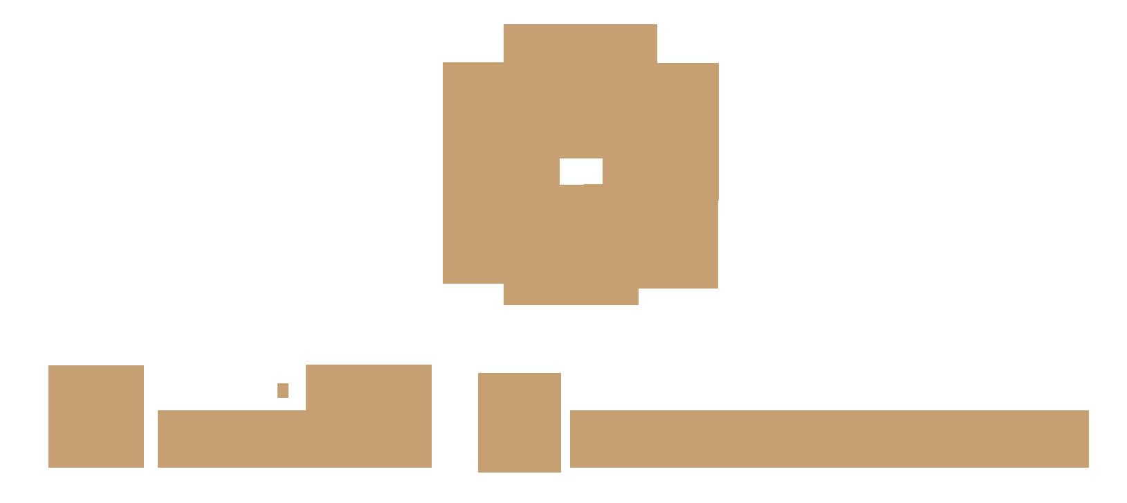 Maite Navarro